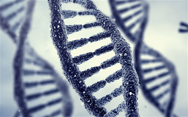 This pic is taken from an article about how Phobias may be memories passed down in genes from ancestors