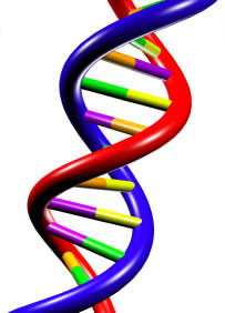 Entrepreneurial DNA is as a part of you and me as our fingerprints and every other physical part we see of ourselves.