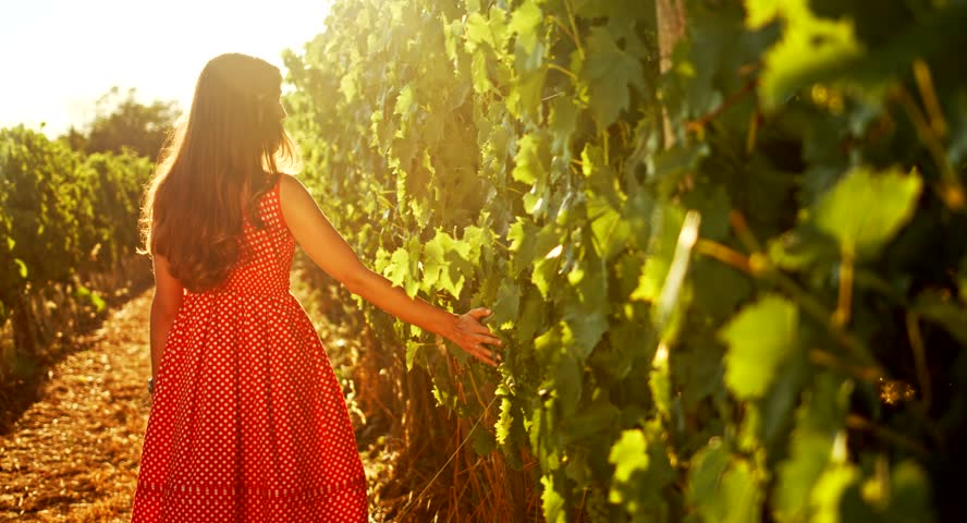 vineyard woman in polka dot dress